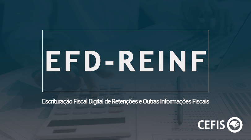 EFD - REINF